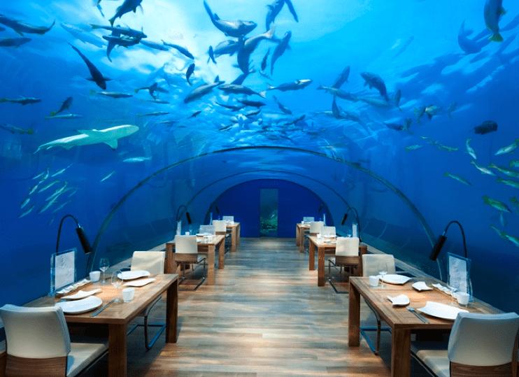 Conrad Maldives Rangali Island 雖然基本房型不是水上屋,但是飯店的豪華程度仍然受到點數玩家的喜好。(圖片取自官網)